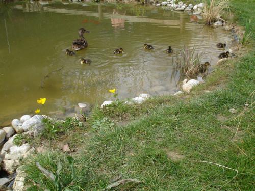 Jardin Aqueduc