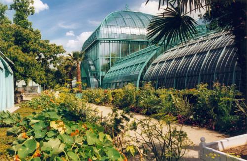 Serres d'Auteuil, viveros tropicales en París