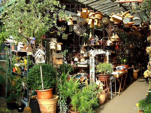 Los mercados de flores y pájaros de París